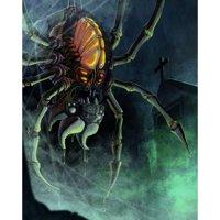 Tribunus BUNDLE